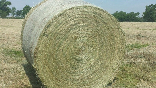 how much hay per acre